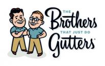 The Brothers That Just Do Gutters (Houston)